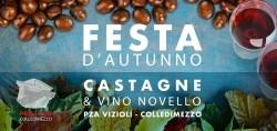 Castagne e Vino Novello a Colledimezzo il 26 novembre 2017