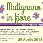 Mutignano in Fiore: Festa di Primavera il 29 aprile 2018