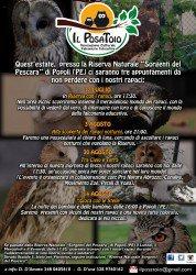 Il Posatoio - Sorgenti del Pescara - Eventi estate 2015 falconeria-rapaci