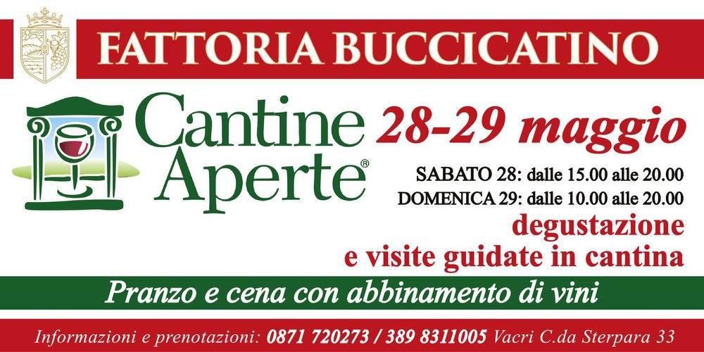 Cantine Aperte 2016 in Abruzzo il 28 e 29 maggio: tutti i programmi 25