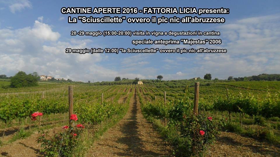 Cantine Aperte 2016 in Abruzzo il 28 e 29 maggio: tutti i programmi 27