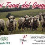 Cantine aperte 2016 - Programma Maligni