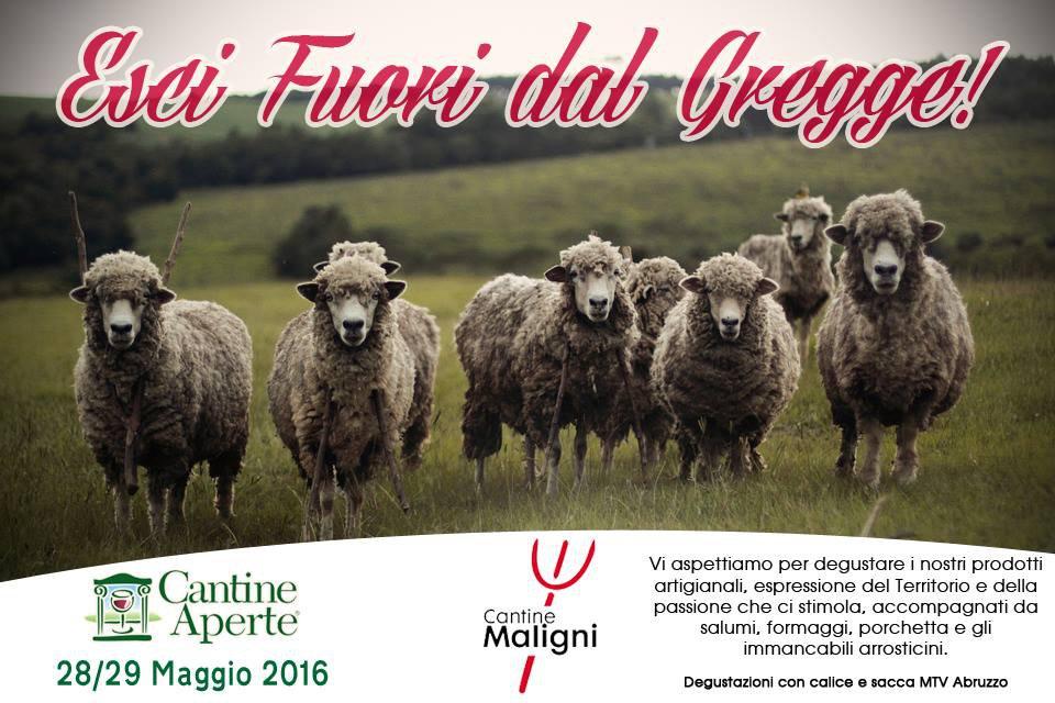 Cantine Aperte 2016 in Abruzzo il 28 e 29 maggio: tutti i programmi 12