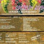 Castrum diVino a Casalbordino il 5 e 6 novembre 2016 1
