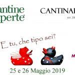 Cantine Aperte 2019 in Abruzzo 2